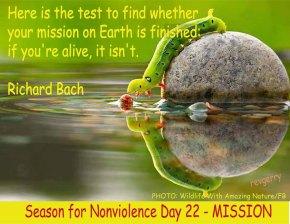 Motivational Mondays (February23)
