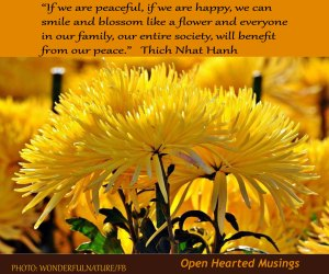 yellowflowers_wonderfulnature.OHM