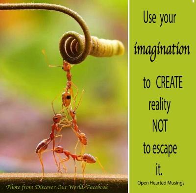 ants_teamwork_discoverourworld.jpg