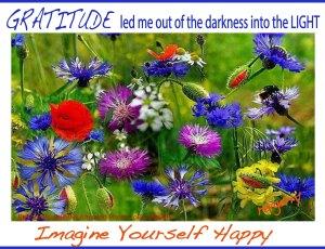 brightwildflowers_Beautiful & Amazing Photo Collection_IYH_GRATITUDE