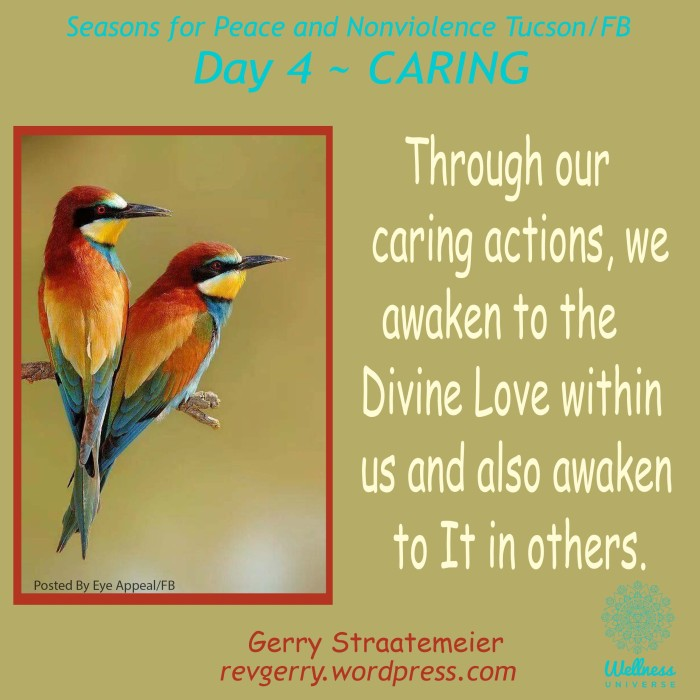 2quietbirds_Eye Appeal_SNV2016_Day4_CARING_gs