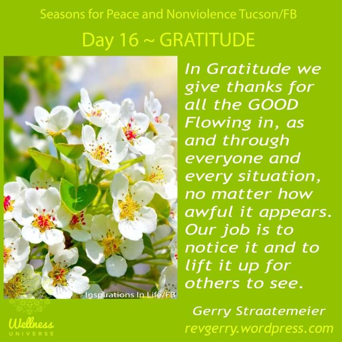 blossoms_InspirationsinLife_SNV2016_Day16_GRATITUDE_gs
