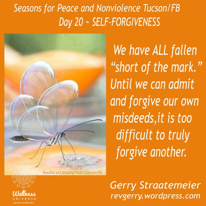 clear-wingedbutterfly_Beautiful & Amazing Photo Collection_SNV2016_DAY20_SELF.FORGIVENESS_gs