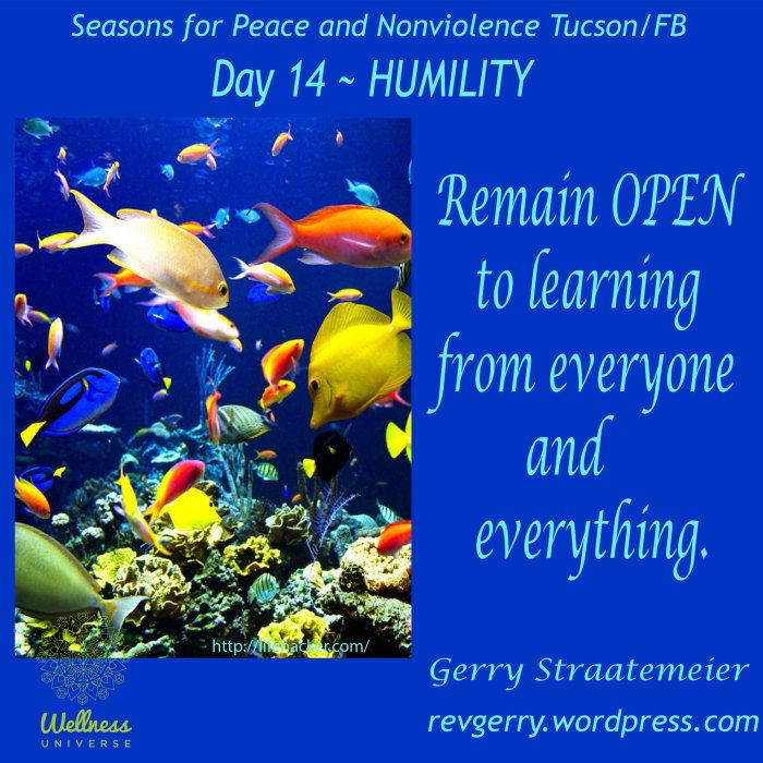 fishinocean_lifehacker_SNV2016_Day14_HUMILITY_gs.jpeg
