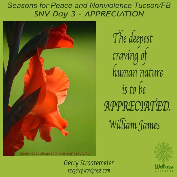 flowers_red_green_Bkgrnd_GEBfdp_SNV2016_Day3_APPRECIATION