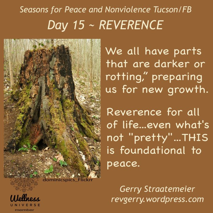 rottingTreeTrunk_Flickrr_dominicspics_SNV2016_Day15_REVERENCE_gs