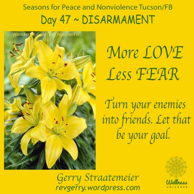 yellowLily_Wonderful Colors of Nature_SNV2016_Day47_DISARMAMENT