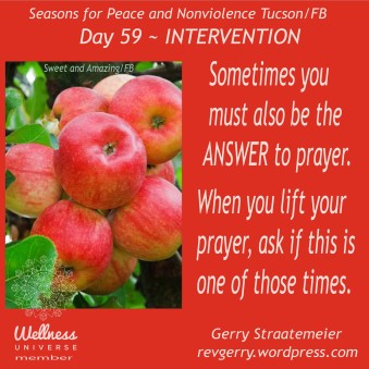 applesontree_SweetandAmazing_SNV2016_Day59~INTERVENTION_gs