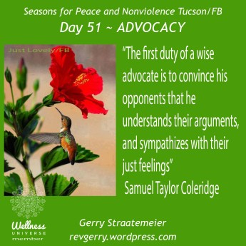 hummingbird_hibiscus_JustLovely_SNV2016_Day51_ADVOCACY