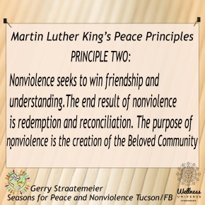 Standing Rock Valor and King's 2nd Principle of Nonviolence